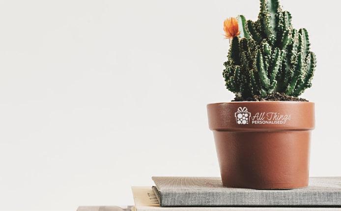 Flower Pots gift