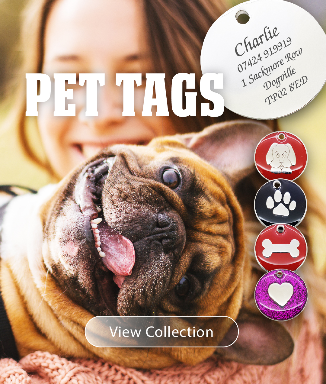 pet-tags-banner